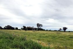 COBRAM SOUTH ROAD