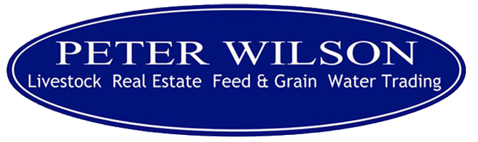 Peter Wilson Livestock & Real Estate
